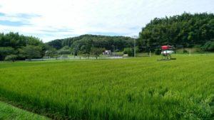 野菜・麦の農薬散布にドローン